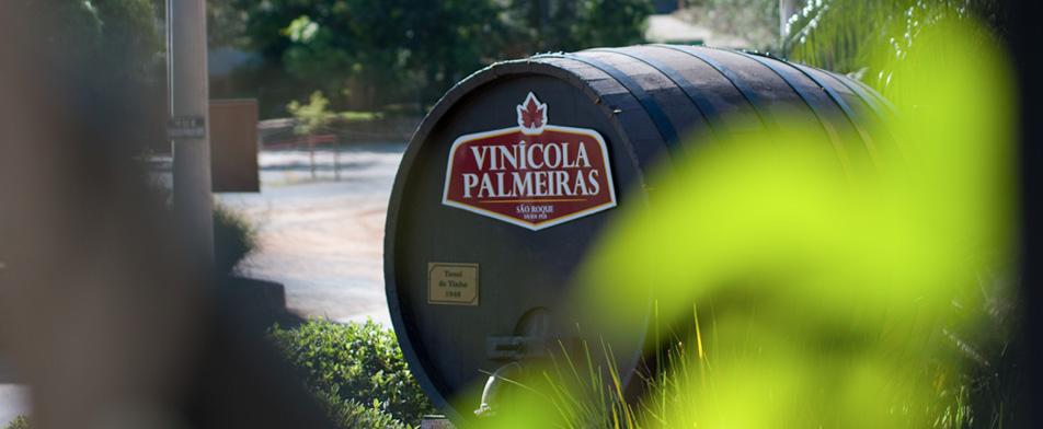 vinícola palmeiras