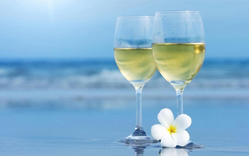vinhos para verão