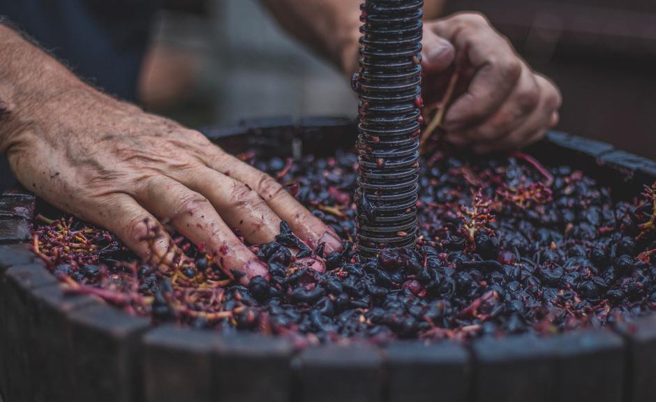 produção de vinho 2018