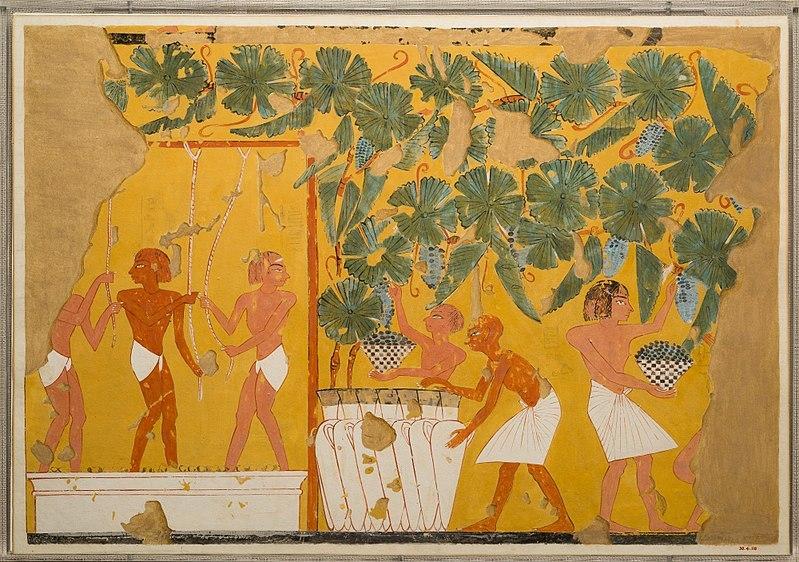 O vinho no Egito Antigo