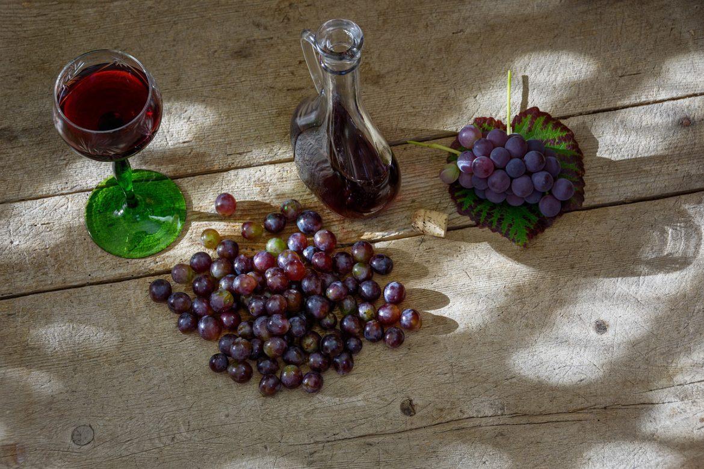 Produção de vinho em 2018 foi histórica