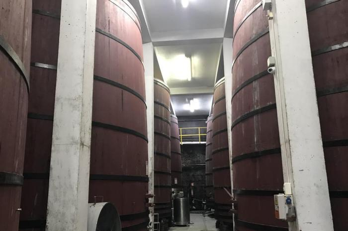 Serra Gaúcha: atividades inusitadas nas vinícolas