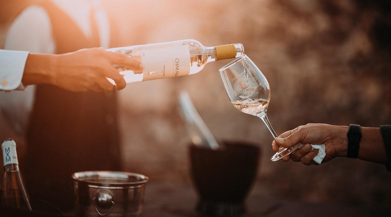 Por que ter cuidado extra com vinhos em garrafas transparentes