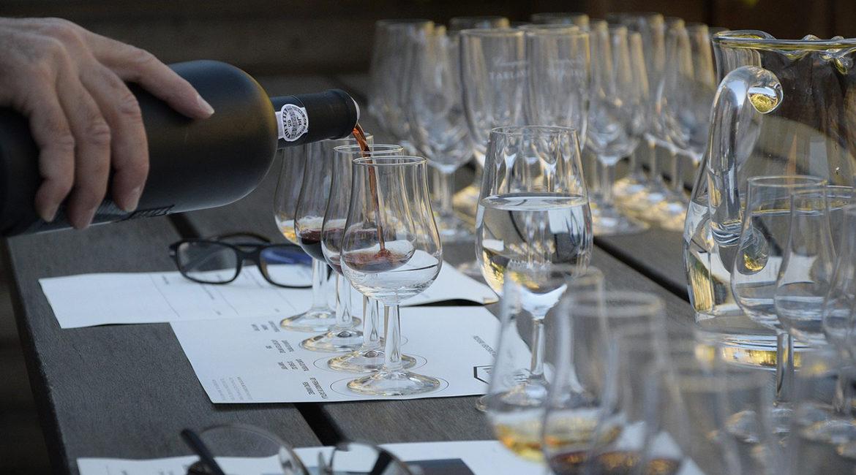GUIA COMPLETO: Como degustar um vinho?