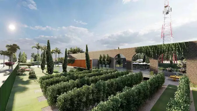 Brasília ganhará primeira vinícola com rótulos 100% produzidos na capital
