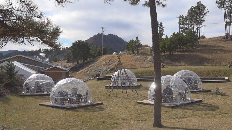 Vinícola usa iglus de plástico para receber clientes em meio à pandemia