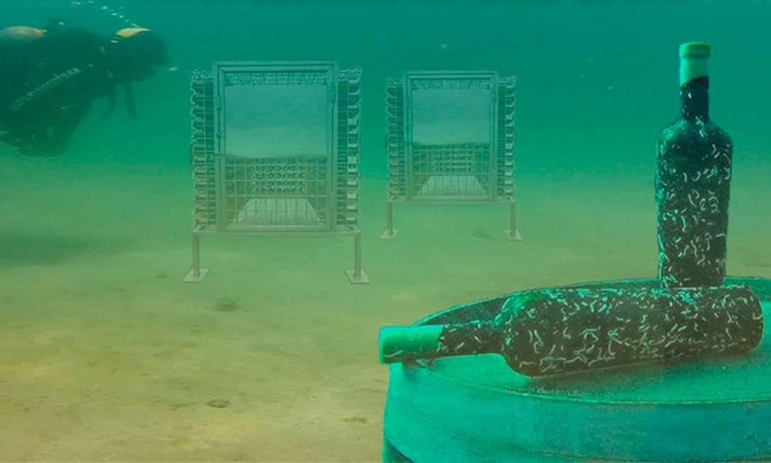 Santa Catarina terá a primeira adega subaquática para maturação de vinhos